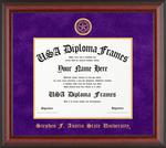 Classic Cherry Mahogony Matte Diploma Frame
